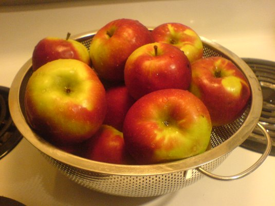 A Beautiful Bowl of Macintosh Apples Ready to Become something NEW :)